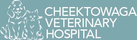 Cheektowaga Veterinary Hospital